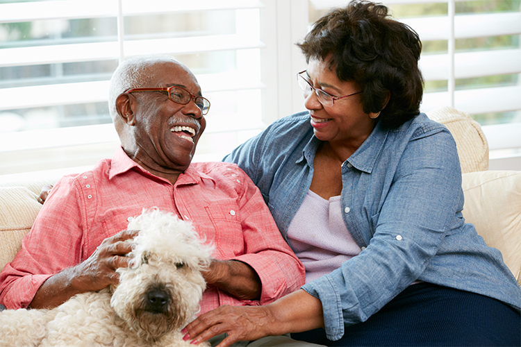 How Pet Therapy Has Changed Assisted Living