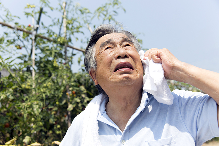 Elderly Heat Stroke and Exhaustion
